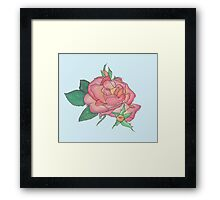 Ink and Watercolor Rose Framed Print