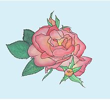 Ink and Watercolor Rose Photographic Print