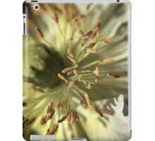 Open and Ready iPad Case/Skin