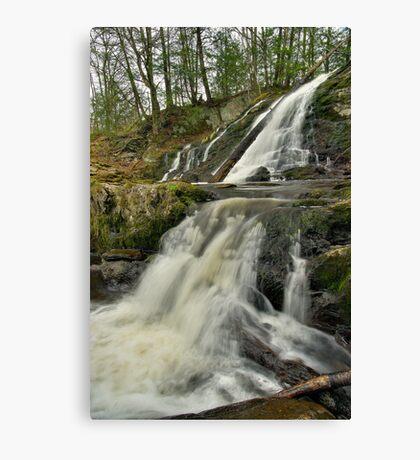 Dead Creek Falls - Vertical Canvas Print