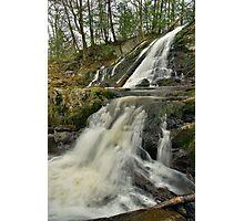 Dead Creek Falls - Vertical Photographic Print