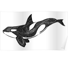 Orca- The Killer Whale Poster