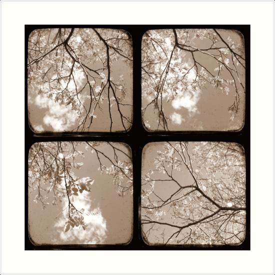Look Through My Window - TTV by Kitsmumma