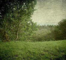 Zen Garden by Kitsmumma