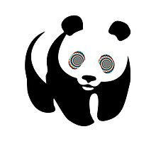 Trippy Panda by Zach Muldoon