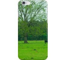 Steaks, oh I mean Cows, in the meadow iPhone Case/Skin