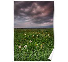 Dandy Field v3 Poster