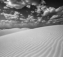 Monahans Sandhills State Park, Texas by Jeff Blanchard