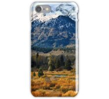 Autumn in the Tetons iPhone Case/Skin