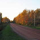 Prince Edward Island, Red Dirt Road, Canada by Linda Jackson