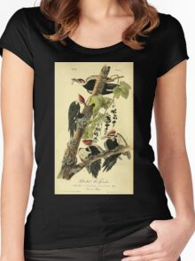 James Audubon Vector Rebuild - The Birds of America - From Drawings Made in the United States and Their Territories V 1-7 1840 - Pileated Woodpecker Women's Fitted Scoop T-Shirt