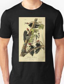 James Audubon Vector Rebuild - The Birds of America - From Drawings Made in the United States and Their Territories V 1-7 1840 - Pileated Woodpecker Unisex T-Shirt