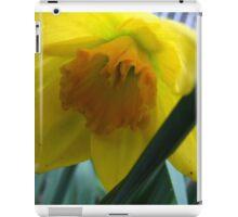 Baby Daff iPad Case/Skin