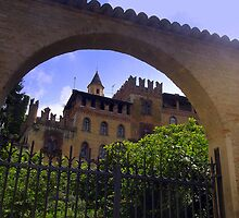Castell'Arquato by sstarlightss