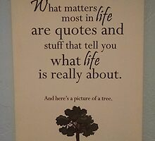 What Matters Most in Life are Quotes and Stuff that Tell You What Life is Really About. And Here's a Picture of a Tree. by kastein