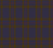 00042 Elliot Clan Tartan  by Detnecs2013