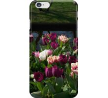 Tulips at Keukenhof iPhone Case/Skin