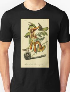 James Audubon Vector Rebuild - The Birds of America - From Drawings Made in the United States and Their Territories V 1-7 1840 - Ruby Throated Hummingbird T-Shirt