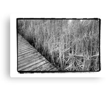 marsh Canvas Print