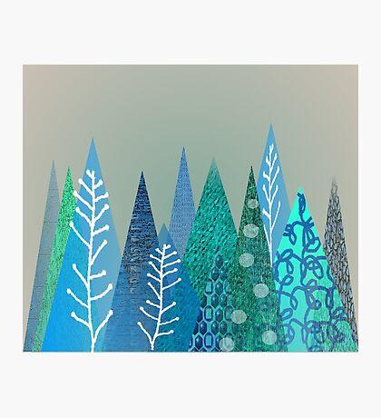Evergreen Tree Art in Blue Photographic Print