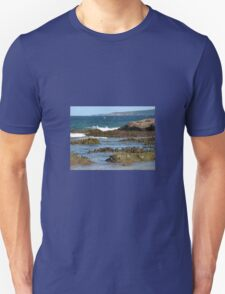 ROCK SCULPTURES T-Shirt