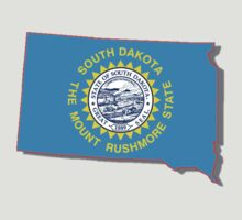 SOUTH DAKOTA STATE FLAG by peteroxcliffe