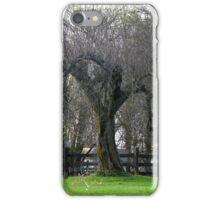 Apple Tree Spring Arrives iPhone Case/Skin