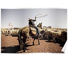 Lasso - Marla, South Australia Poster