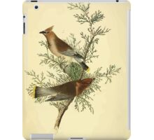 James Audubon Vector Rebuild - The Birds of America - From Drawings Made in the United States and Their Territories V 1-7 1840 - Cedar Bird or Cedar Waxwing iPad Case/Skin