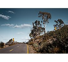Sharp turn Photographic Print