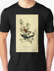 James Audubon Vector Rebuild - The Birds of America - From Drawings Made in the United States and Their Territories V 1-7 1840 - Boat Tailed Grackle Unisex T-Shirt