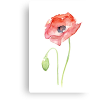 Red Poppy Watercolor Canvas Print