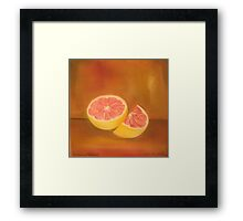 Grapefruit Anthony Mitchell Oil Painting Framed Print
