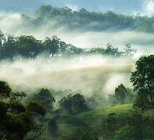 """""""Misty Views"""" by debsphotos"""