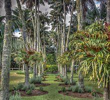 Island Garden  by DavidMelville