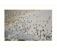 Rainbow Swarm Art Print