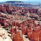Bryce Canyon National Park, Utah, USA by Adrian Paul