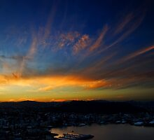 Wellington Sunset by Nicole Braun