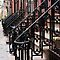 Wrought iron and steps