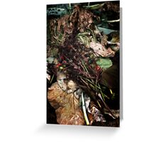 Decay 18 Greeting Card