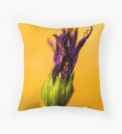 Torch for the Plant Olmpics. Throw Pillow