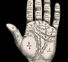 Palmistry Map by monsterplanet