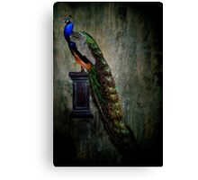 On a pedestal Canvas Print