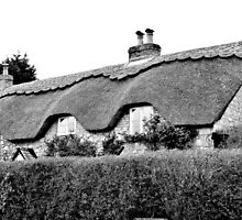 Thatched by missmoneypenny