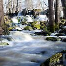 21.4.2015: Rapids and Old Dam I by Petri Volanen