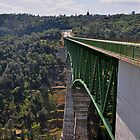 AMGEN 2010: Foresthill Bridge, Auburn California &amp; highest bridge in California by Lenny La Rue, IPA
