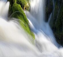 21.4.2015: Mossy Stones and Flowing Water by Petri Volanen