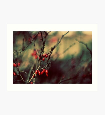 {season 'tis} Art Print