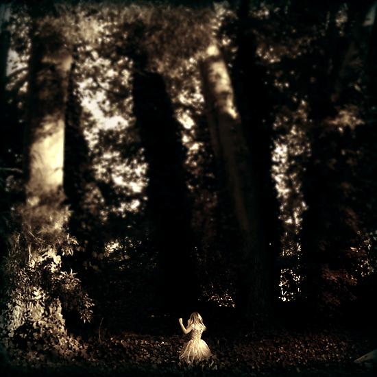 Forest Dance by James McKenzie