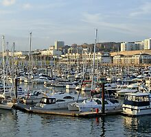 Brighton Marina by Avril Jones